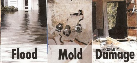 flood-mold-property-damage